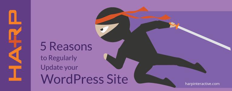5 Reasons to Regularly Update your WordPressSite