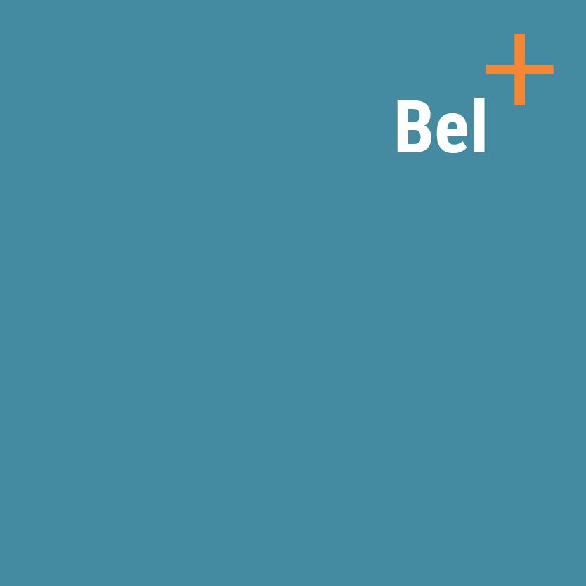 Bel_Work_Rollover (1)